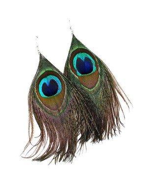 Dames oorbellen veren Pauw